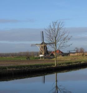 IMG_0110 molen